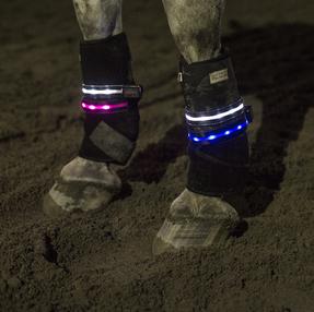 LED Ben- & armljus